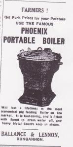phoenix portable boiler 26.10.35 001