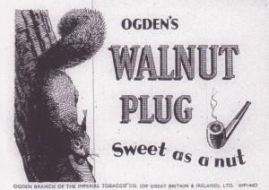 WALNUT PLUG 001